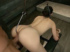 BDSM, Brunette, Fucking, Hardcore